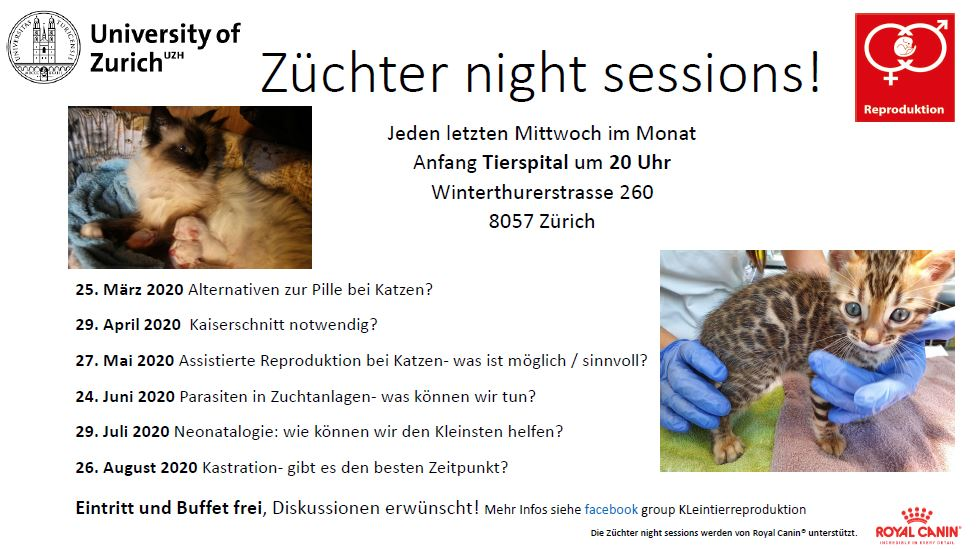 Züchter night sessions